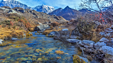 Top 5 National Park and Wildlife in Nepal